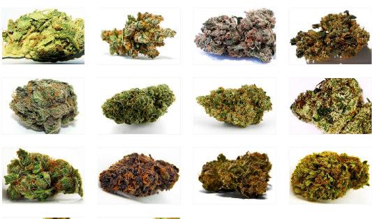 Buying Weed Online Made Easy